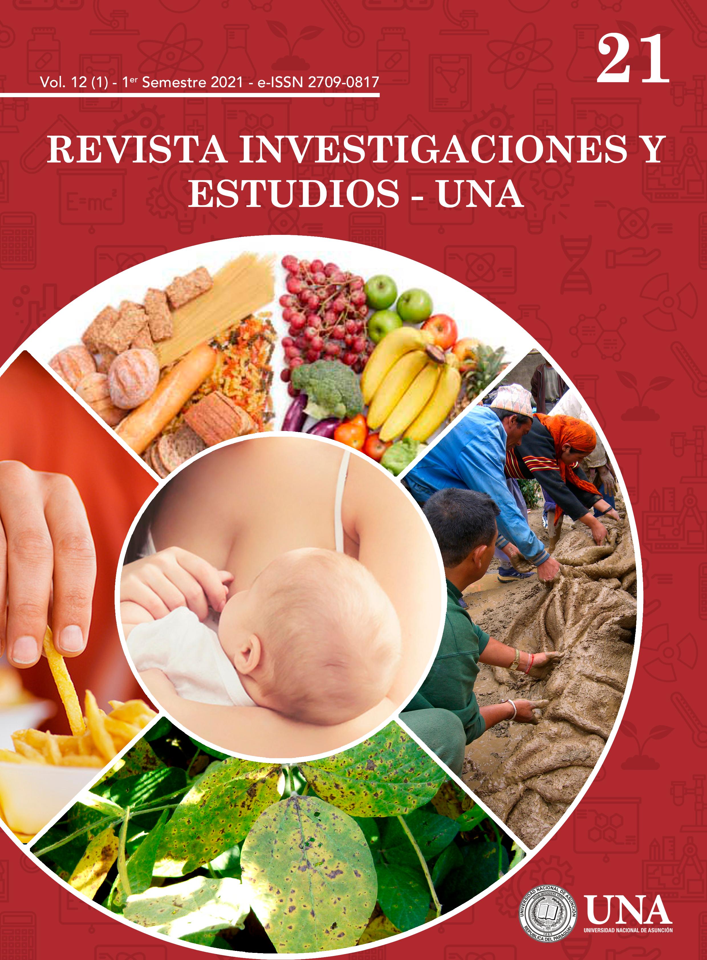 Ver Vol. 12 Núm. 1 (2021): Investigaciones y Estudios - UNA